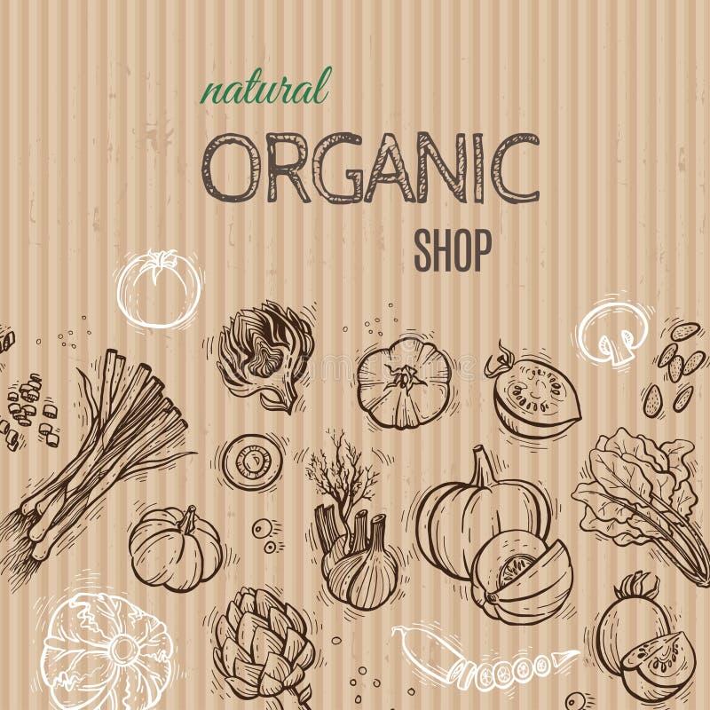 Концепция картона овощей стоковые фотографии rf