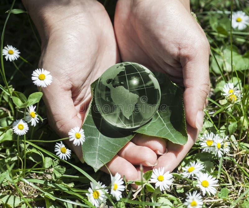 Концепция мировой окружающей среды стоковые фотографии rf