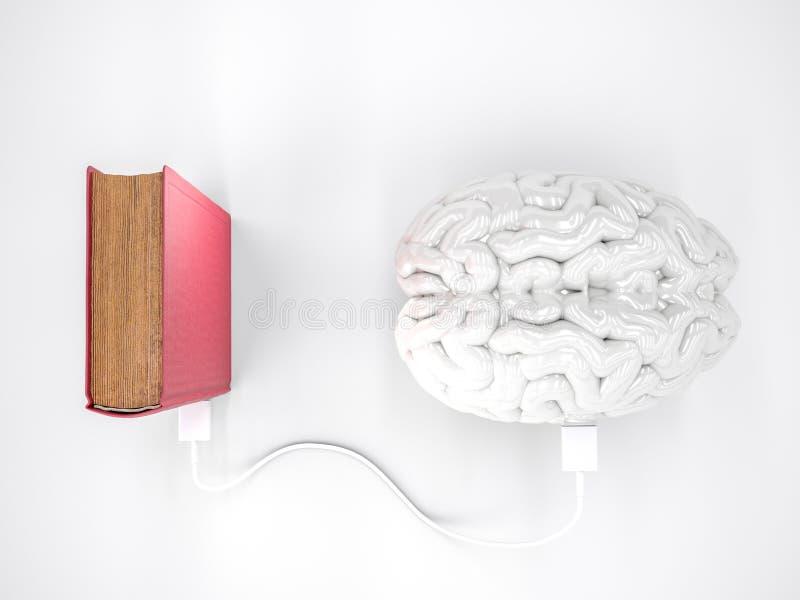 Концепция мозга книги поручая стоковое изображение rf