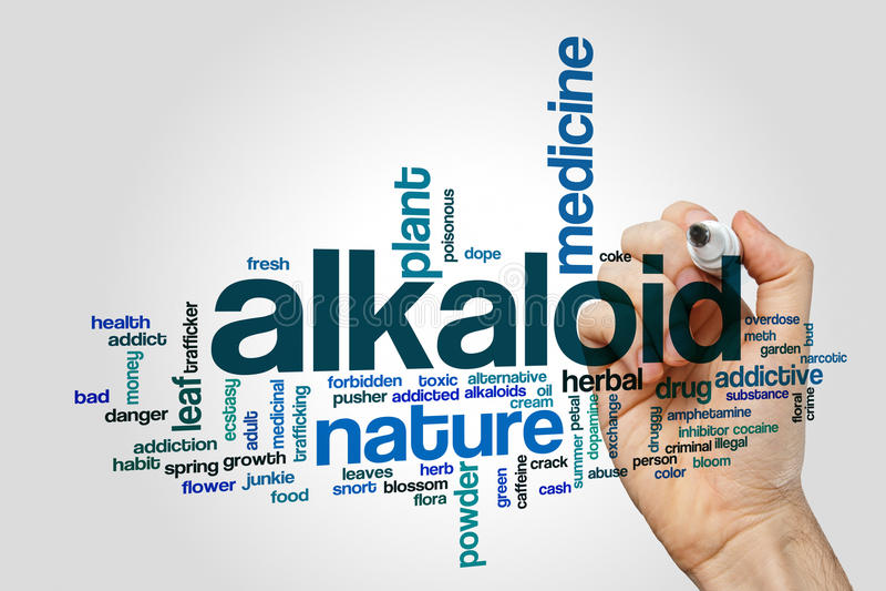 Концепция облака слова алкалоида на серой предпосылке стоковые изображения rf