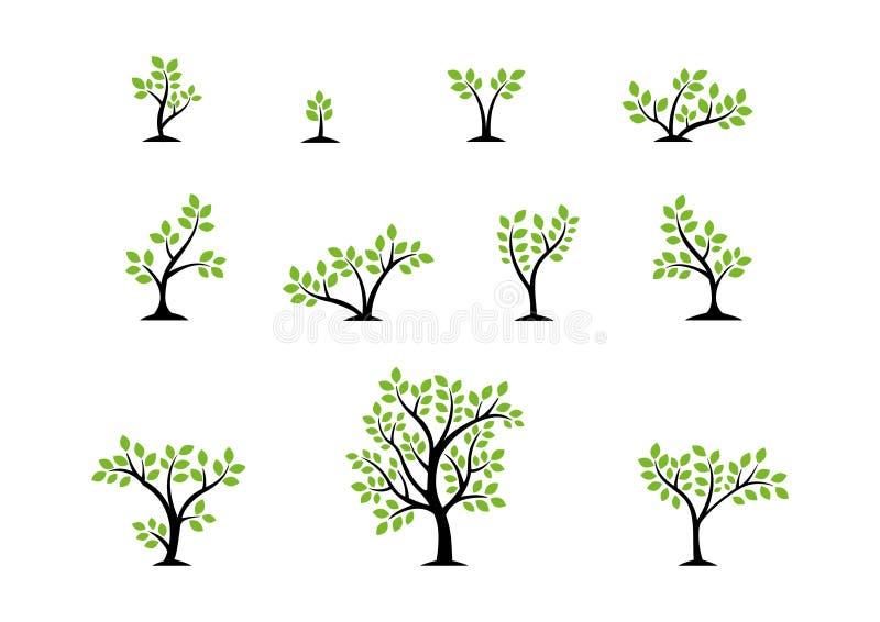 Концепция логотипа дерева, комплект вектора дизайна значка символа здоровья природы деревьев иллюстрация вектора