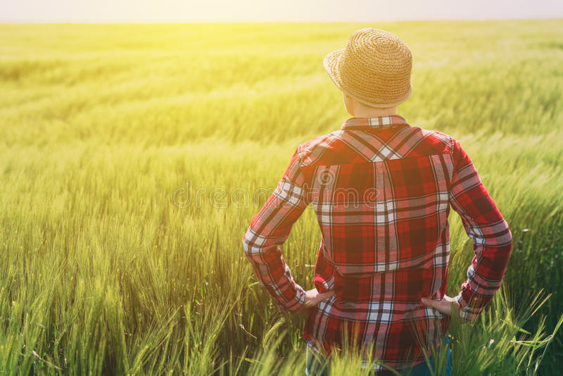 Концепция ответственный обрабатывать землю, женский фермер в хлопьях подрезывает fi стоковое фото rf