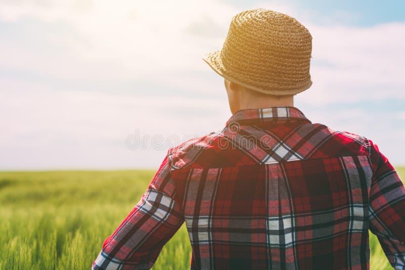 Концепция ответственный обрабатывать землю, женский фермер в хлопьях подрезывает fi стоковое фото
