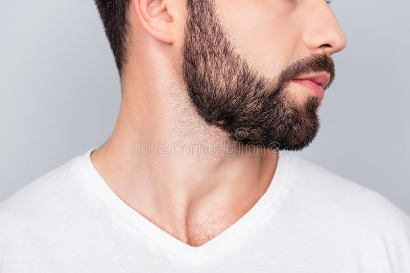 Концепция парикмахерскаи рекламы Портрет профиля подрезанный стороной  стоковое изображение