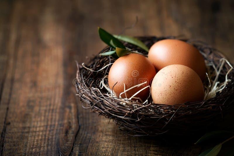 Концепция пасхи с яичками в гнезде стоковое фото rf
