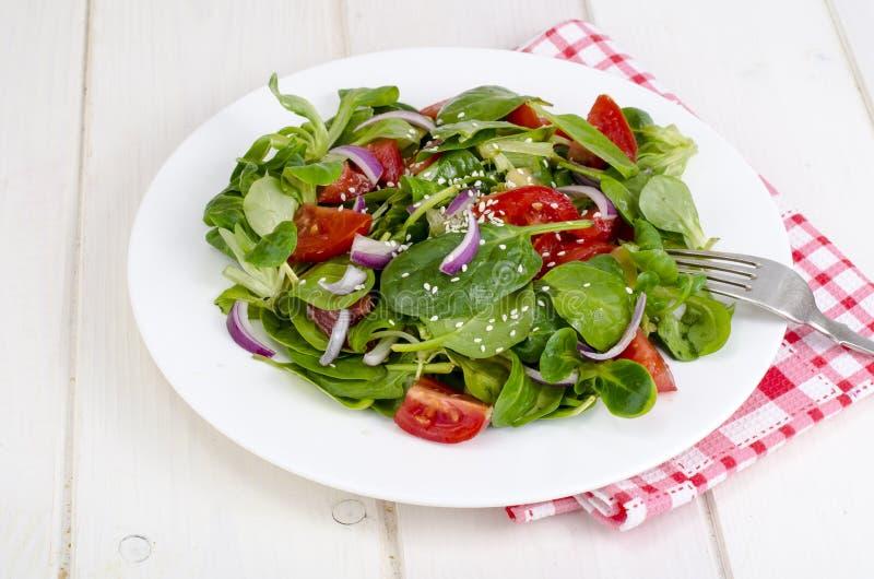 Концепция потери веса, здорового образа жизни Светлый салат от свежих овощей и трав стоковая фотография rf