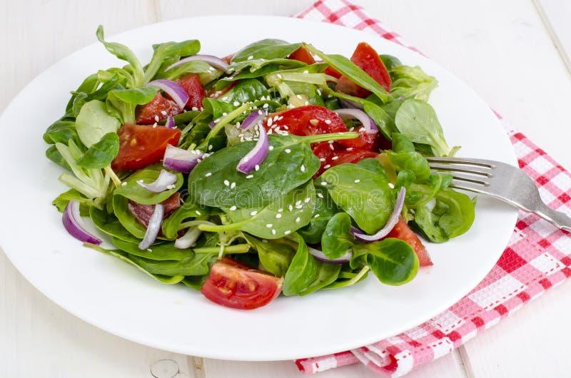 Концепция потери веса, здорового образа жизни Светлый салат от свежих овощей и трав стоковая фотография