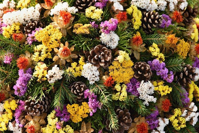 Концепция природы осени украшения осени красивейшие Красочная осень цветет на кладбище - хеллоуине стоковое изображение