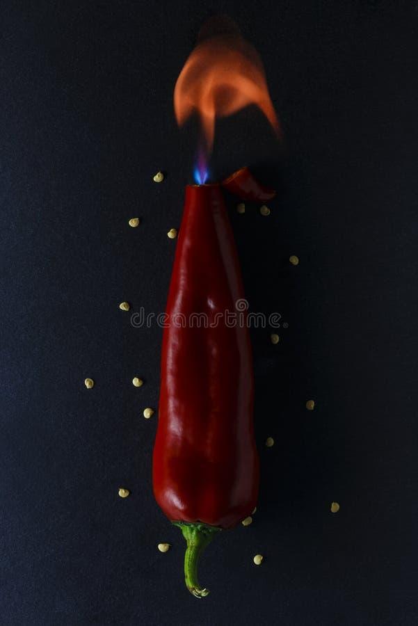 Концепция пламенистого красного перца с огнем стоковые фотографии rf