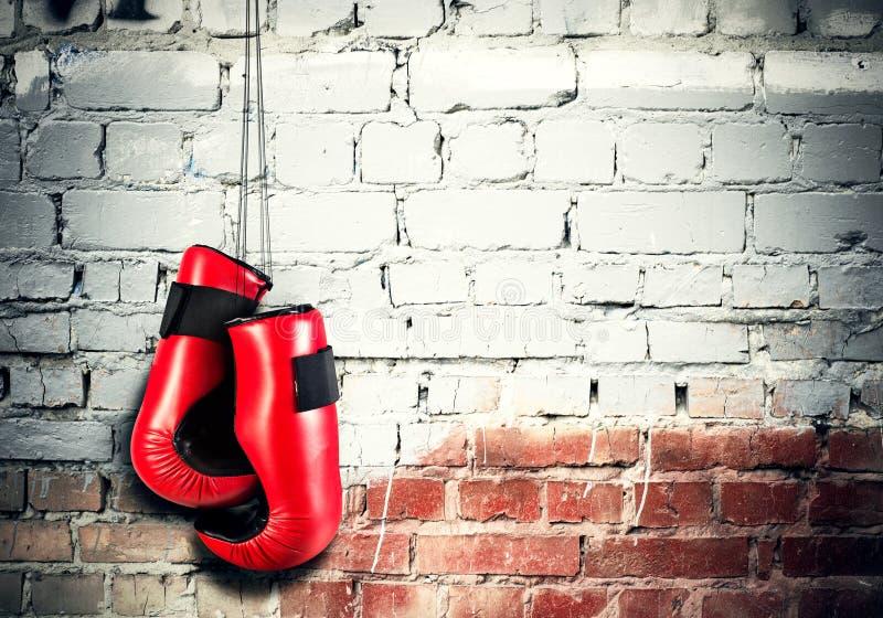 Концепция спорта бокса стоковая фотография