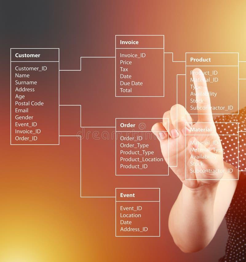 Концепция таблицы базы данных техническая, девушка указывая экран стоковая фотография