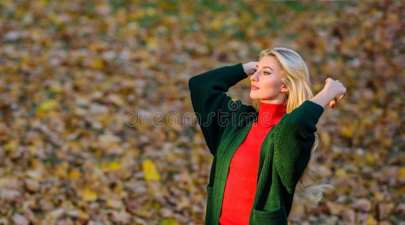 Концепция ухода за волосами Идея цвета холодных блондин Как быстро и безопасно восстановить отбеленные волосы Осенняя парикмахерс стоковая фотография rf