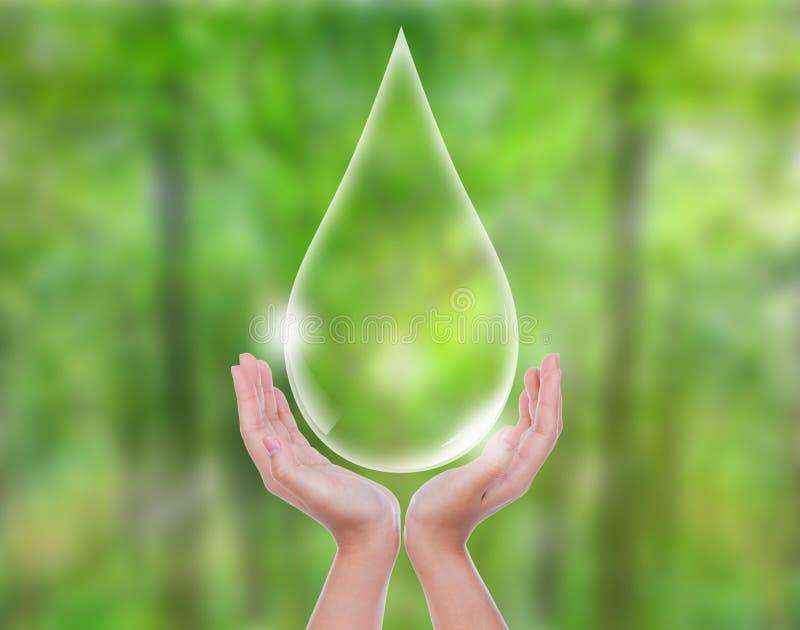 Концепция Eco: Вода владением руки стоковое фото
