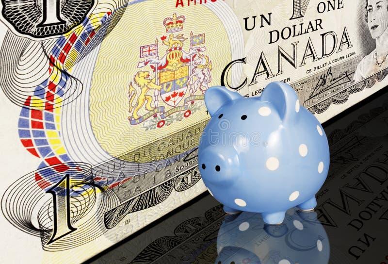 Копилка канадского доллара стоковое фото