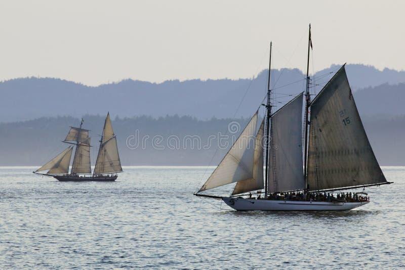 корабли sailing океана стоковая фотография rf