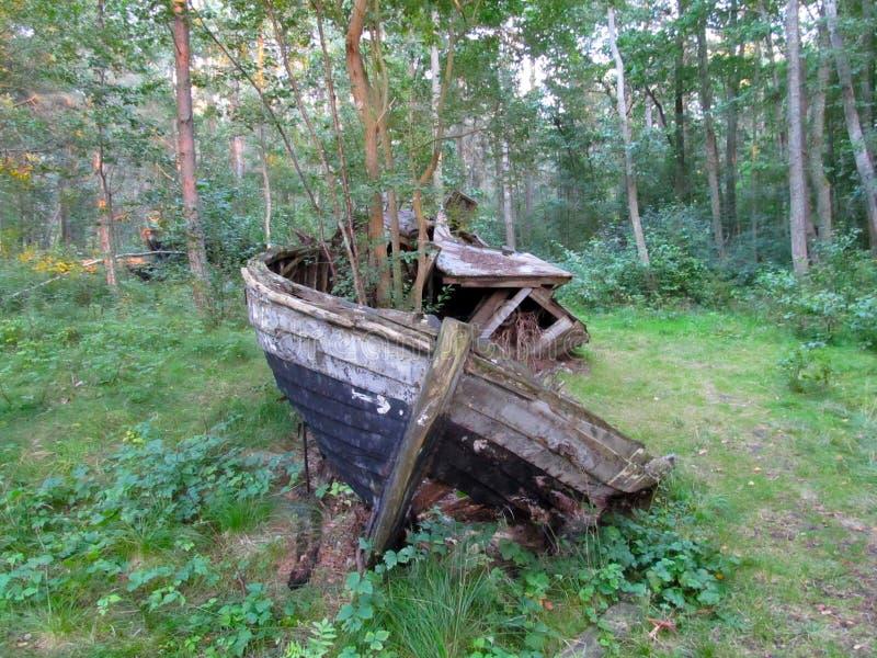 Кораблекрушение в лесе стоковое изображение rf