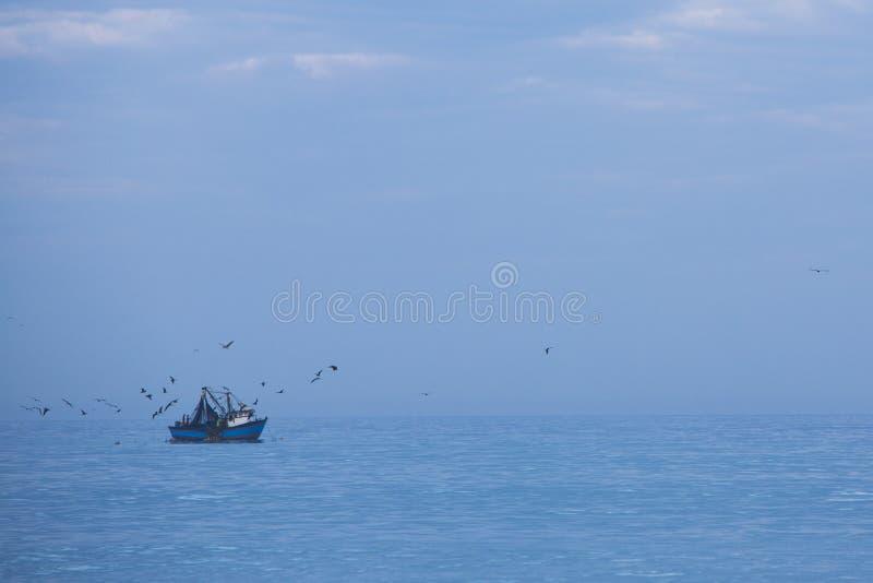 Корабль Fisher, голубой Тихий океан и много птиц летая сверх, Перу стоковое фото