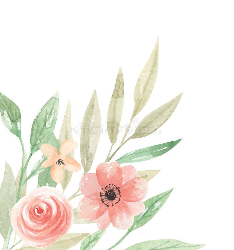 Коралла персика цветков границы акварели листья рамки углового флористические иллюстрация штока