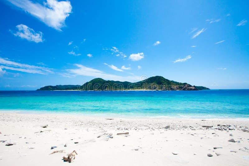 коралл дезертировал остров горизонта стоковые фото
