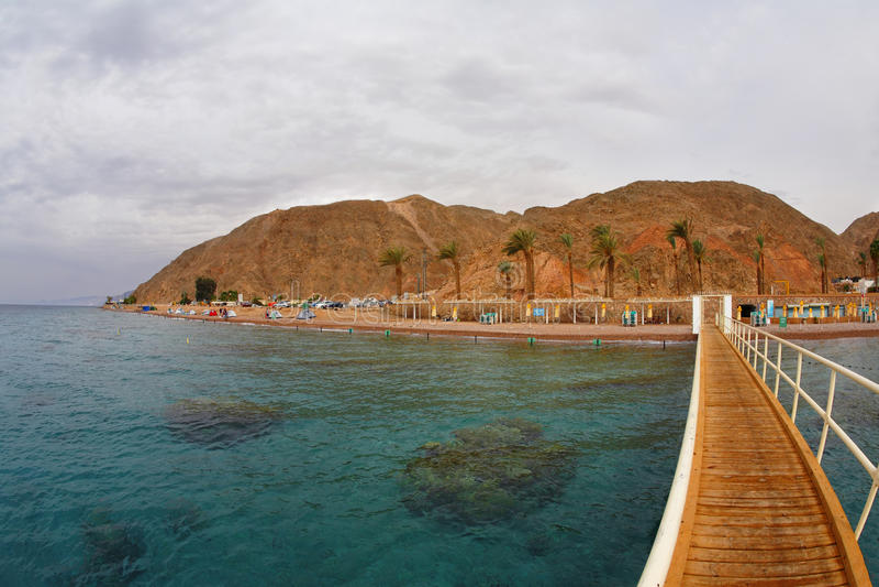 коралл свободного полета пропускает стоковая фотография