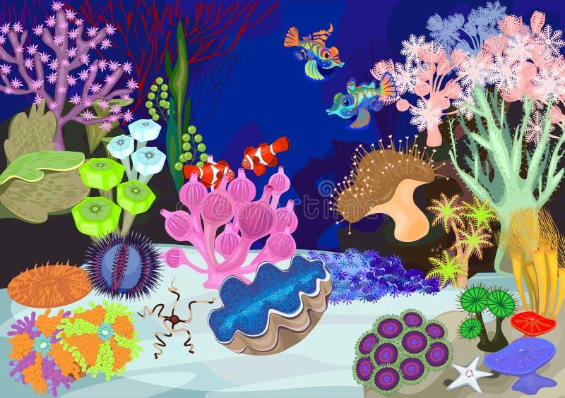 Коралловый риф иллюстрация штока