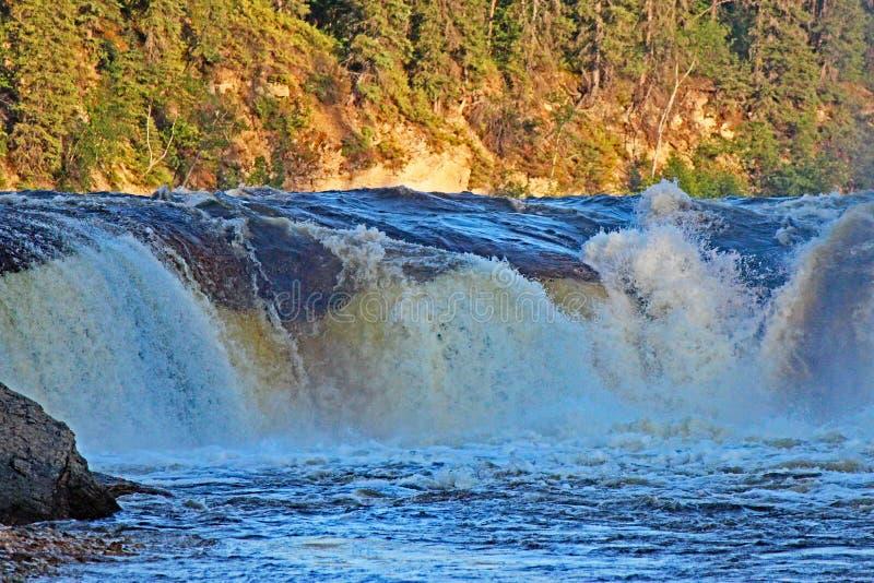 Коралл падает в северо-западные территории стоковое изображение rf