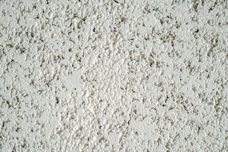 Кора стены гипсолита стоковая фотография rf