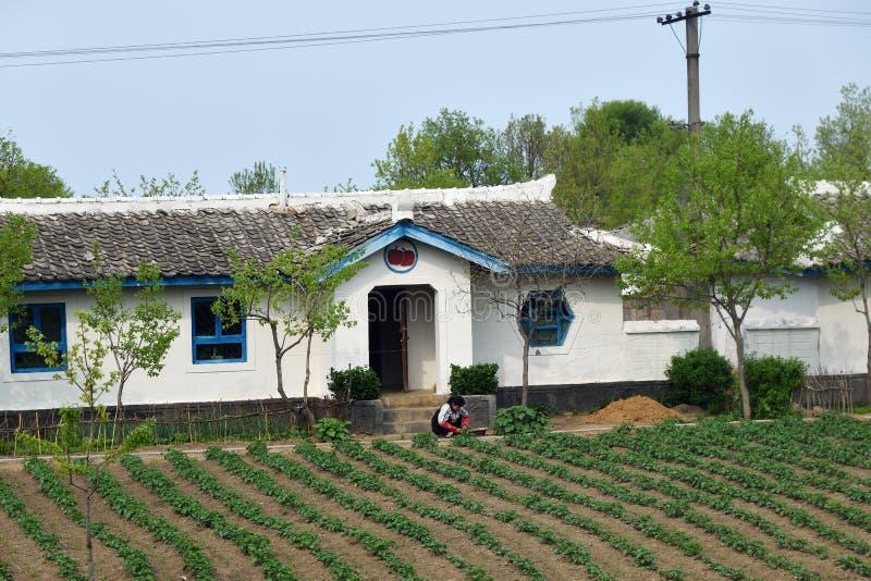 Корейская Северная Корея Жизнь сельской местности стоковые изображения rf