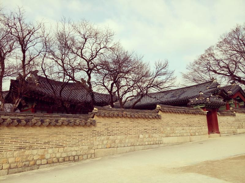 Корея стоковые фотографии rf
