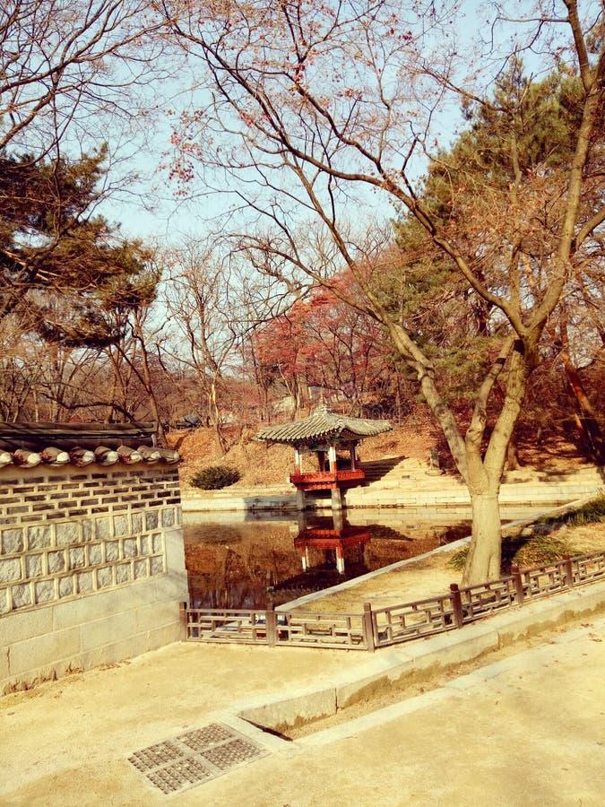 Корея стоковое фото rf