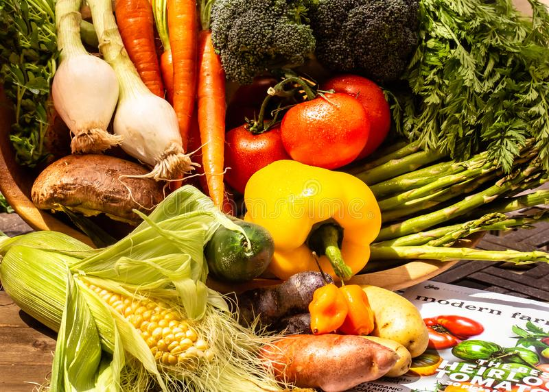 Корзина вполне овощей после harvet стоковое изображение rf