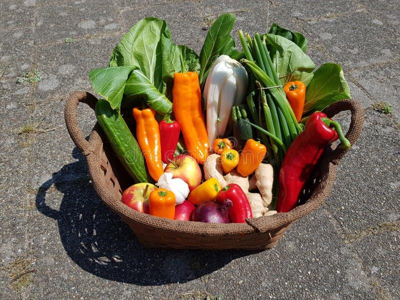 Корзина заполненная со здоровыми бакалеями овощей стоковое изображение rf