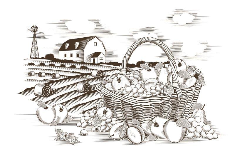 Корзина и ферма плодоовощей бесплатная иллюстрация