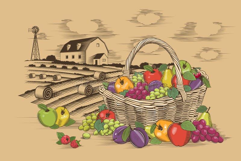 Корзина и ферма плодоовощей иллюстрация вектора