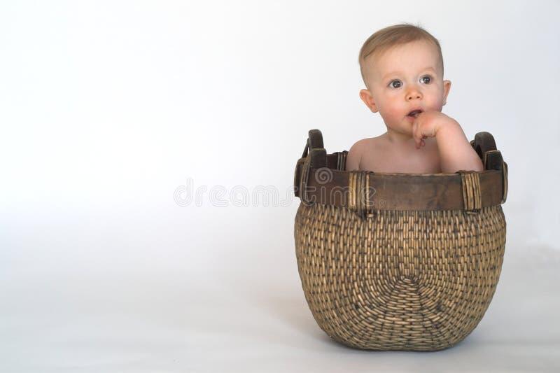 корзина младенца стоковые изображения rf