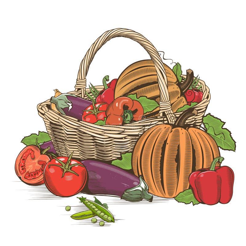 Корзина овощей иллюстрация штока