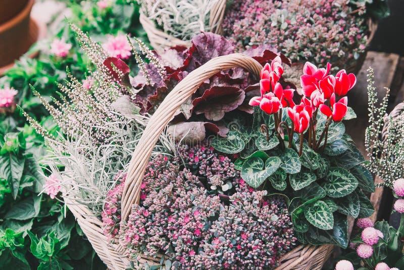 Корзина различных красивых цветов на рынке стоковая фотография rf