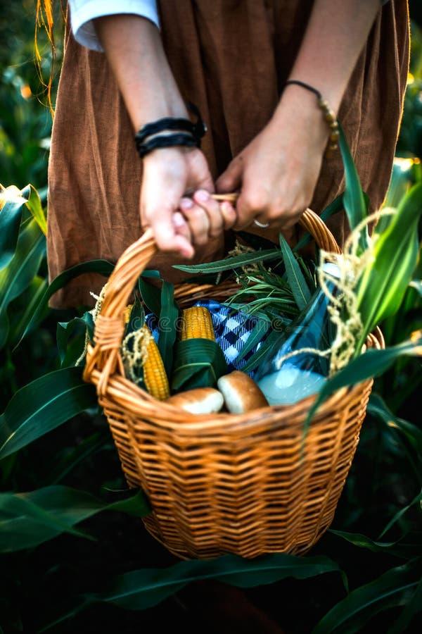 Корзина свежих продуктов в руках женщин стоковые фотографии rf