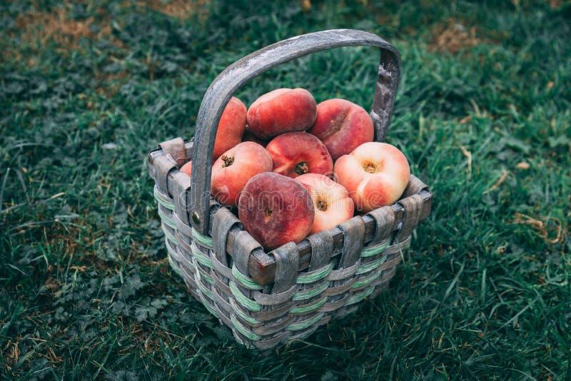 Корзина соломы вполне персиков донута кладя на траву стоковая фотография