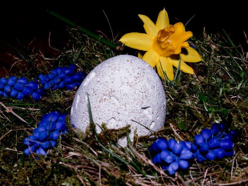 Корзина с пасхальными яйцами на белой предпосылке стоковое фото