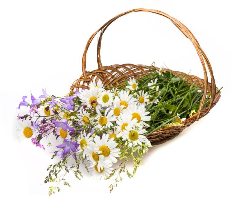 Корзина с полевыми цветками стоковое изображение rf