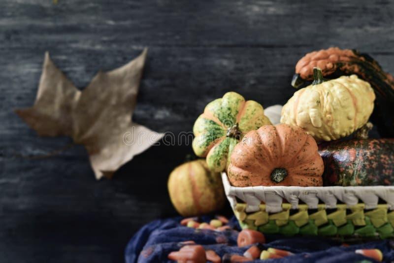 Корзина с различными тыквами и конфетами стоковое изображение