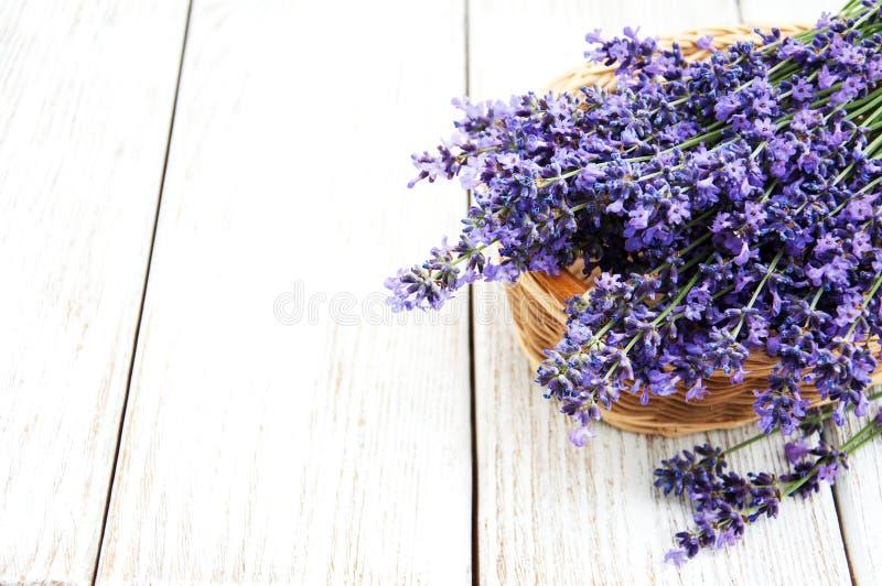 Корзина с цветками lavanda стоковые фото