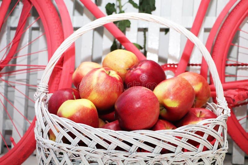 Корзина с яблоками на предпосылке велосипеда Украшение студии стоковые изображения
