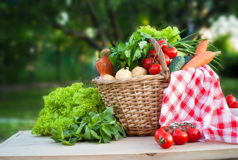 Корзина с freshvegetables стоковое фото