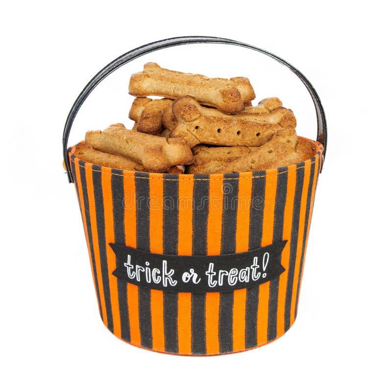 Корзина хеллоуина фокуса или обслуживания с печеньями собаки стоковые изображения rf
