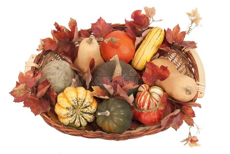 Корзина цветастых harverst и листьев сквош падения стоковые изображения rf