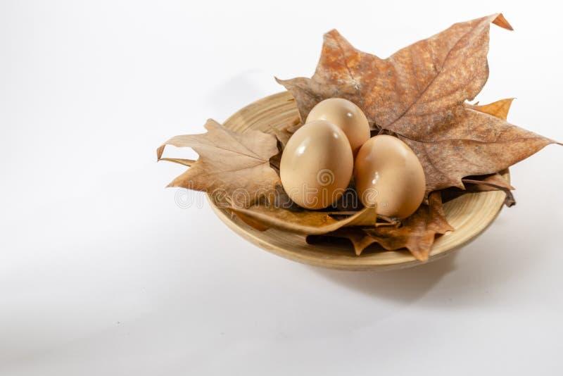 Корзина яя на белой предпосылке фермы с листьями осени стоковые фотографии rf