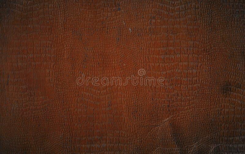 коричневая кожа faux крокодила стоковые фотографии rf