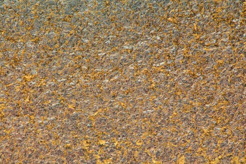 коричневая текстура кожи крупного плана Полезный как предпосылка для дизайна-w стоковое фото